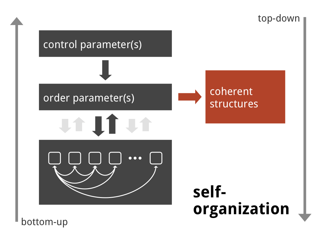 Self Organization in Coordination Dynamics