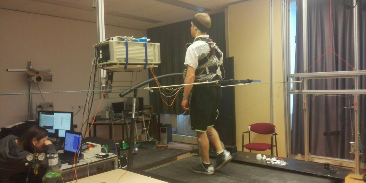 Sensory information for control of gait stability