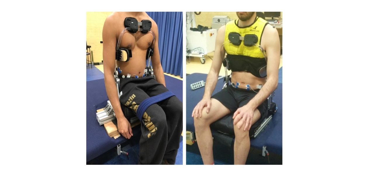 Symbionics: Co-adaptive support of trunk and head in relation to arm movements