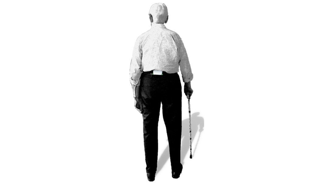 FARAO: Fall Risk Assessment in Older Adults from accelerometry in daily life