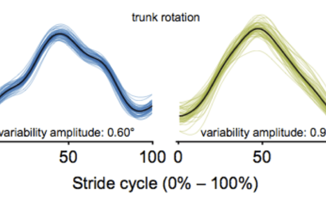 Unravelling chronic low-back pain: The clinical value of movement variability